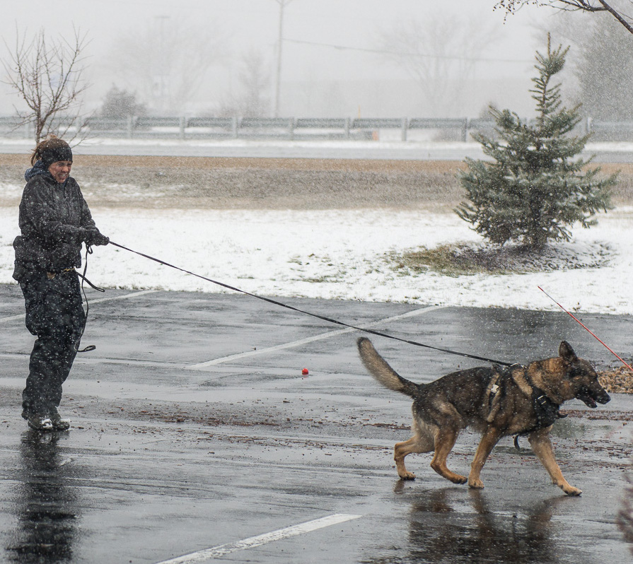 Officer Boespflug and K9 Falko training